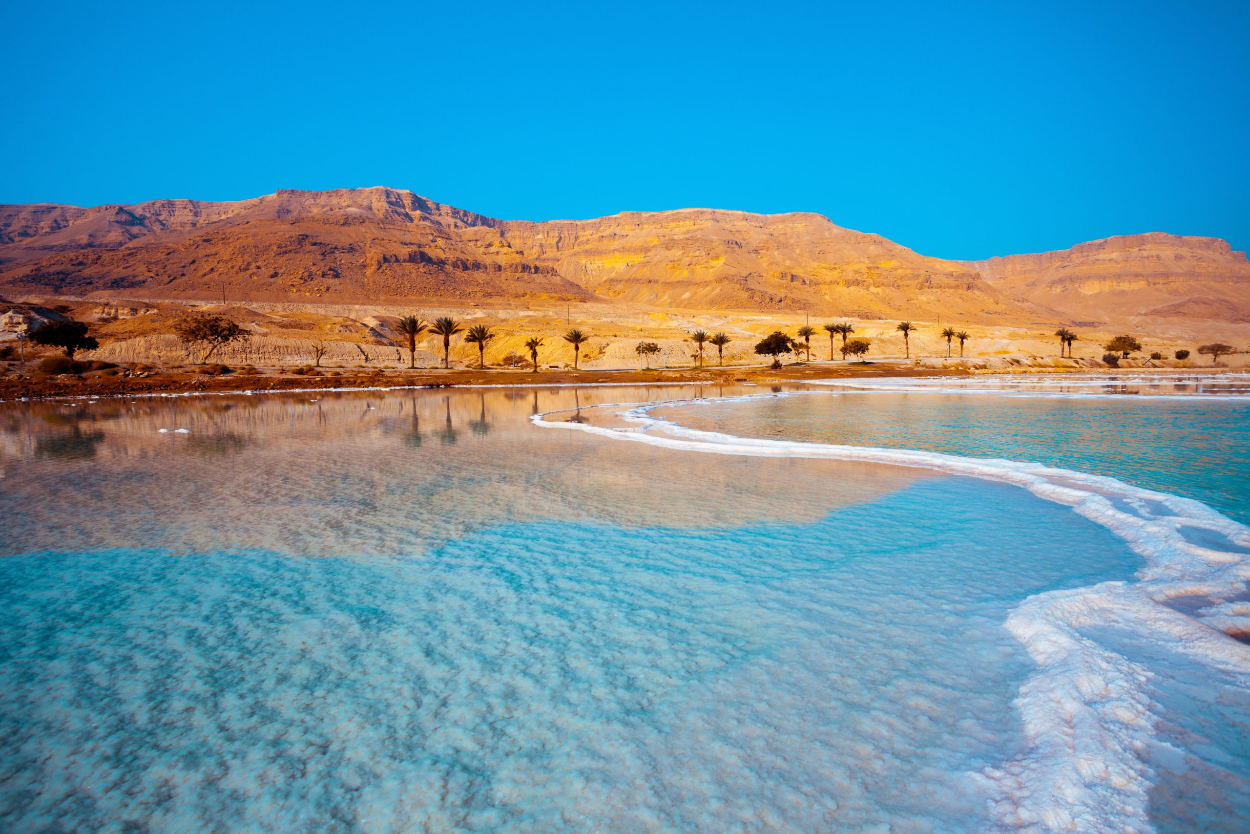Relax At The Dead Sea On Your Amman, Madaba, Mount Nebo, Dead Sea Day Tour From Amman