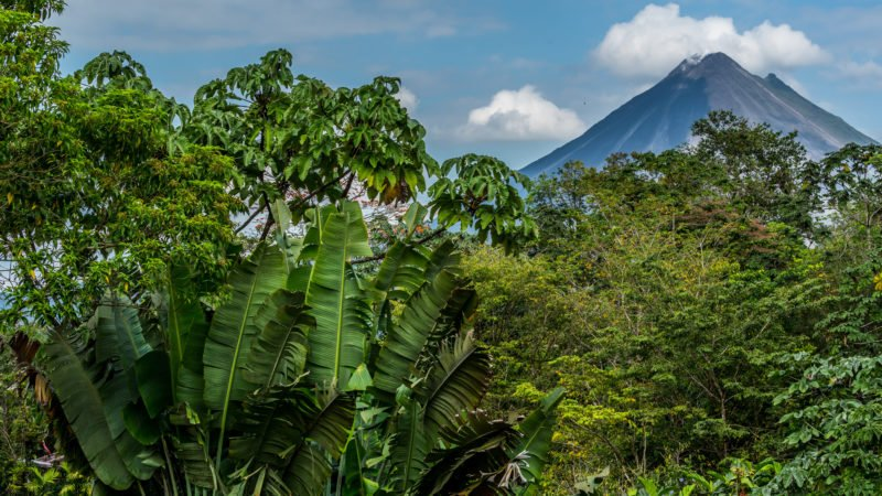 View Over The Forest Top Of Arenal On Your 6 Day Pacific Coast And Arenal Tour Package