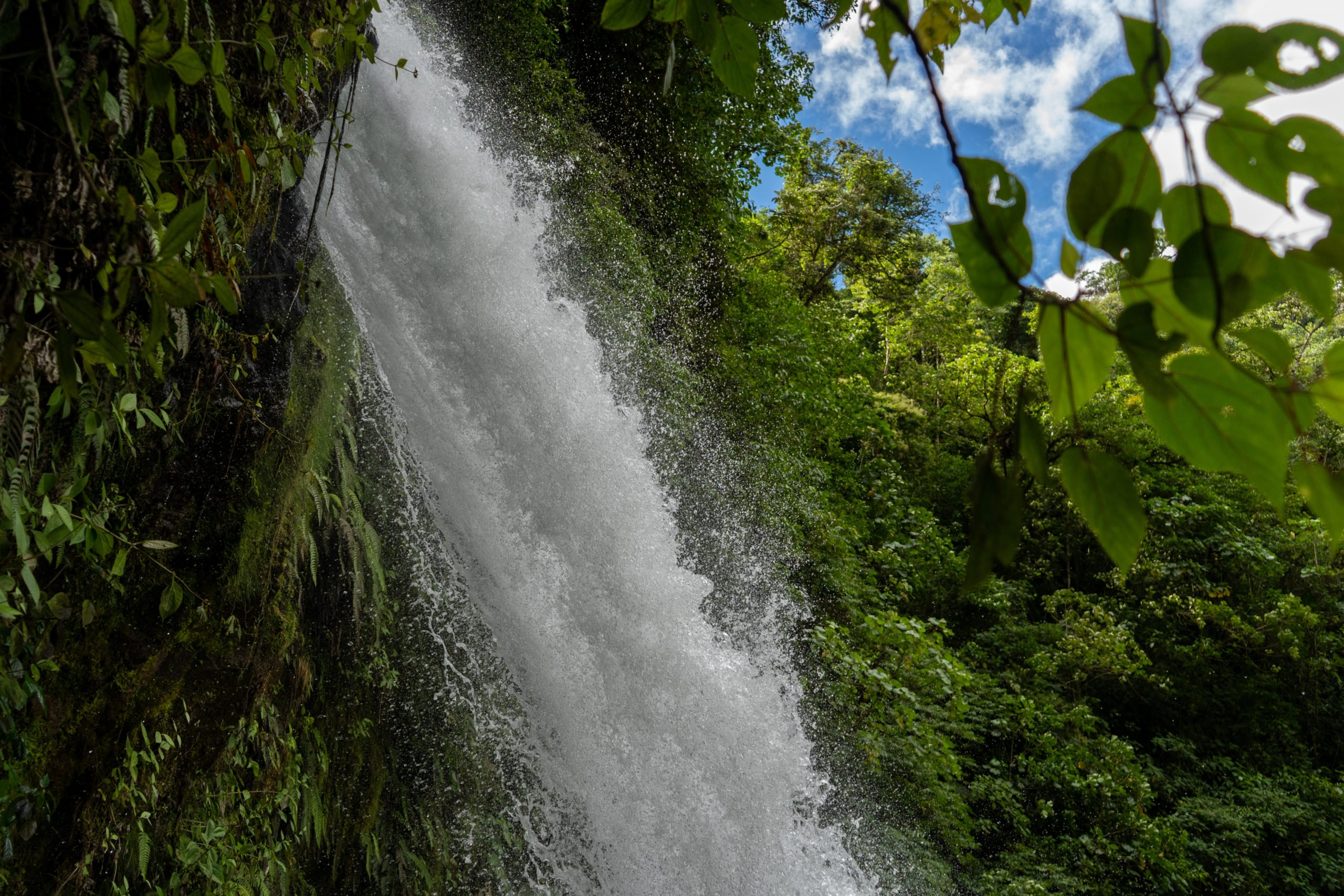Visit The Majestic La Paz Waterfall On The 9 Day Package Tour - Arenal - Monteverde- Manuel Antonio
