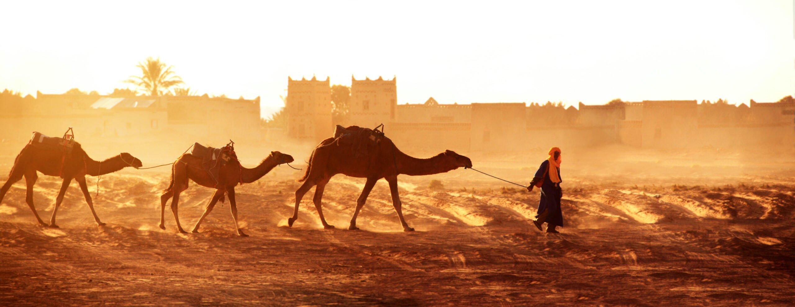 Culture Guide To Morocco
