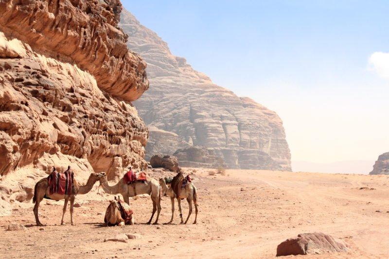 Discover Wadi Rum