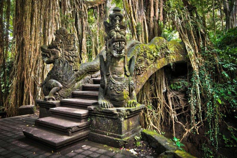 Discover The Ubud Monkey Forest On The Ubud Village Tour
