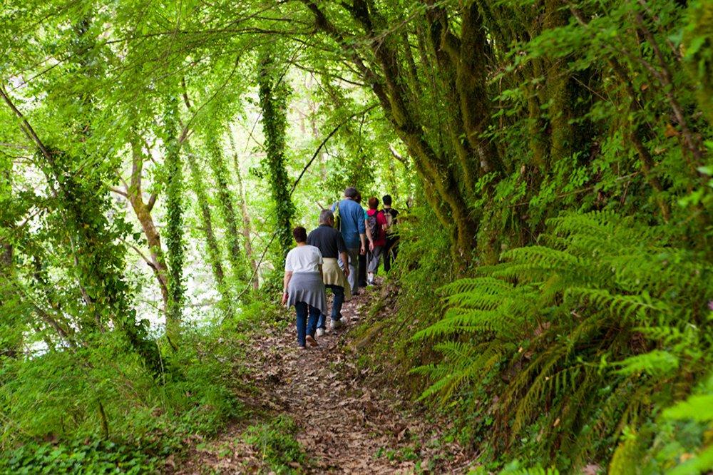 Discover The Beauty Of Tzoumerka During The Sirako And Kalarites Hiking Tour From Tzoumerka_71