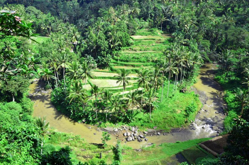 Ubud Wild Water Rafting & Kintamani Volcano Tour From Ubud, Sanur, Kuta, Jimbaran Bay, Seminyak, Legian, Nusa Dua, Uluwatu, Canggu, Denpasar And Gianyar