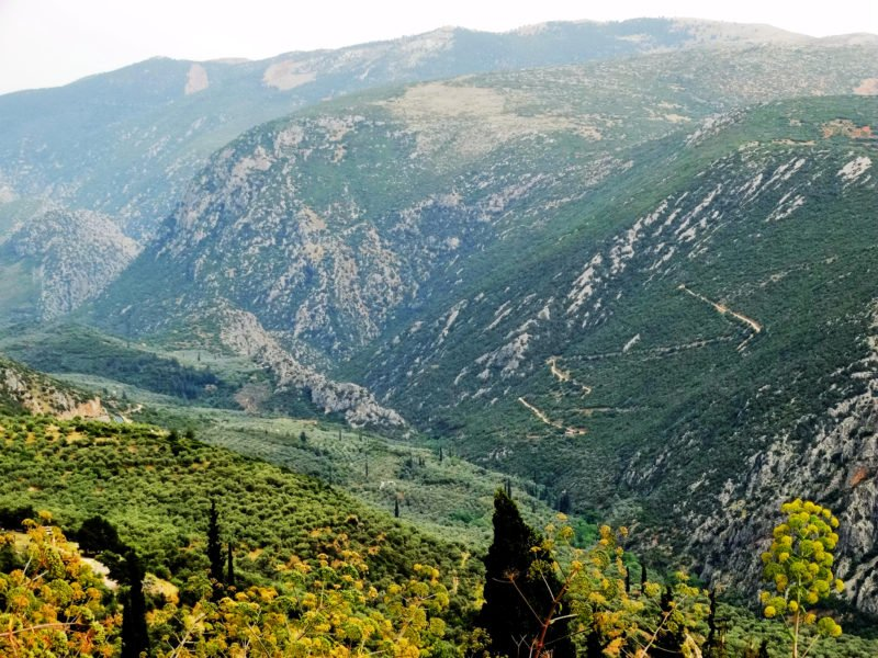 Enjoy The Landscape In Delphi During The Delphi History And Hiking Tour From Athens
