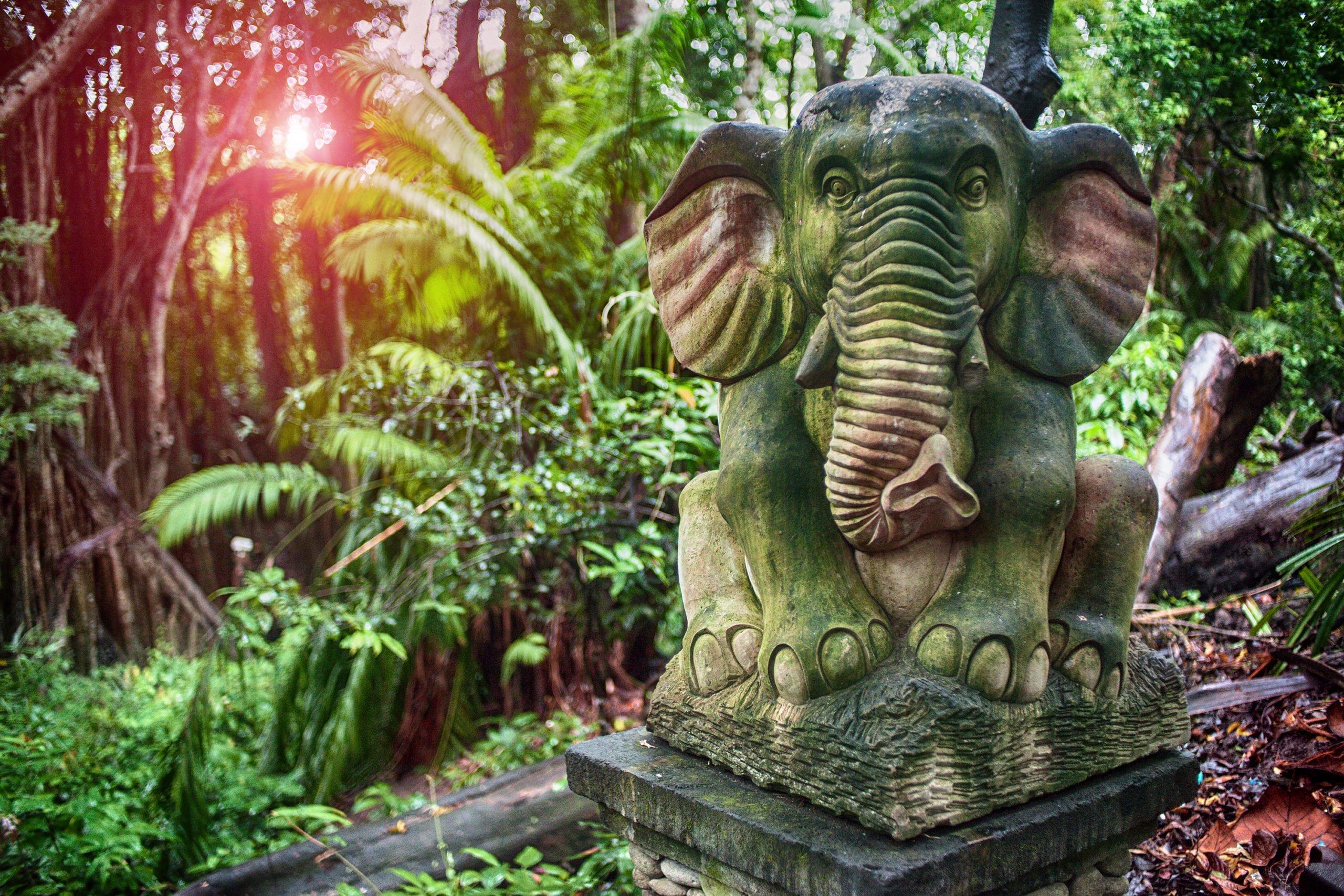 Experience The Famous Monlkey Forest On The Ubud Village And Monkey Forest Half Day Tour From Ubud, Sanur, Kuta, Legian, Nusa Dua, Jimbaram, Uluwatu, Seminyak, Canggu, Denpasar, Gianyar