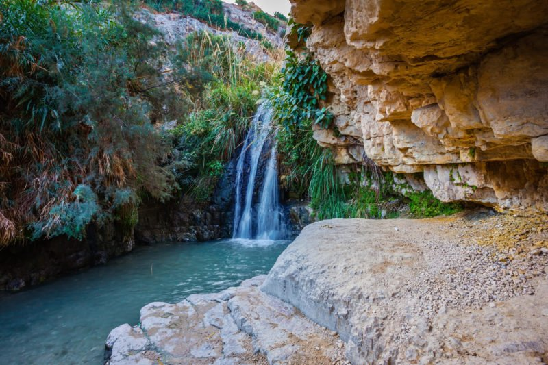 Explore Ein Gedi Nature Reserve On The 13 Day Highlights Of Israel, Saudi Arabia & Jordan Package Tour