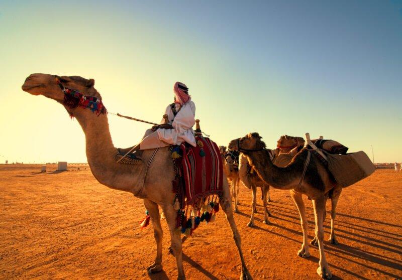 Explore The Beauty Of Al Ula Desert On The 4 Day Madain Saleh Tour From Aqaba