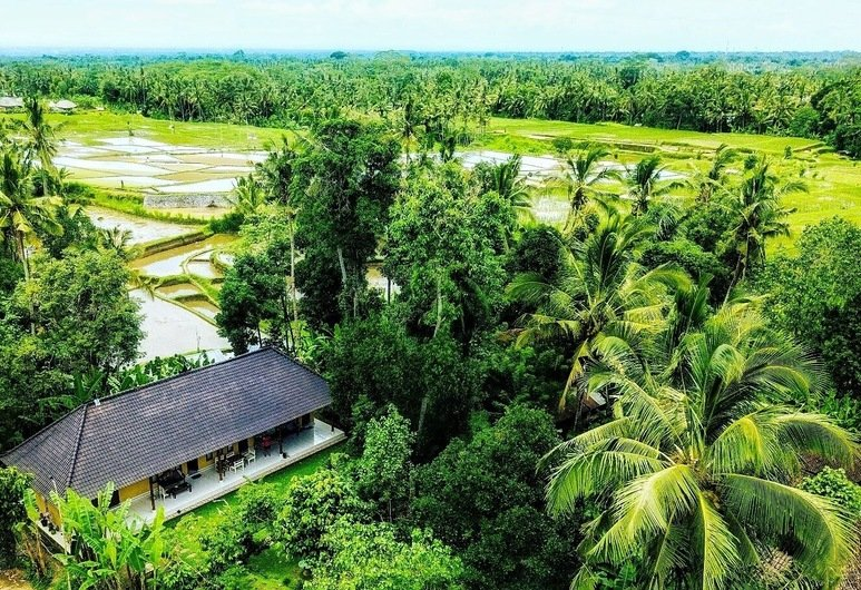 Join A Family In Bresela Village During Balinese Local Homestay Experience In Bresela Village -63