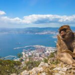 Join Our Gibraltar Tour From Seville