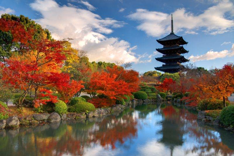 Join Our Kyoto And Nara Tour
