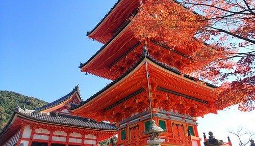 kyoto And Nara Tour From Kyoto