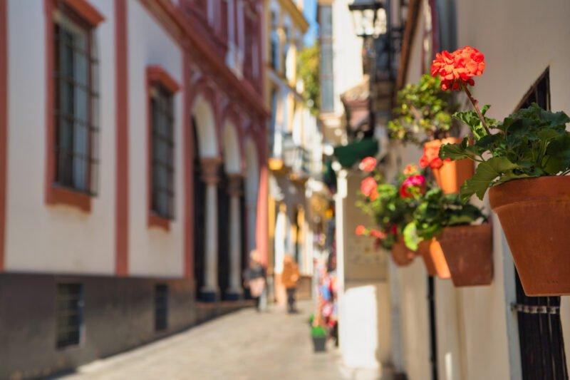 Stroll Through The Narrow Alleys Of Santa Cruz On The Tapas And Flamenco Experience In Seville