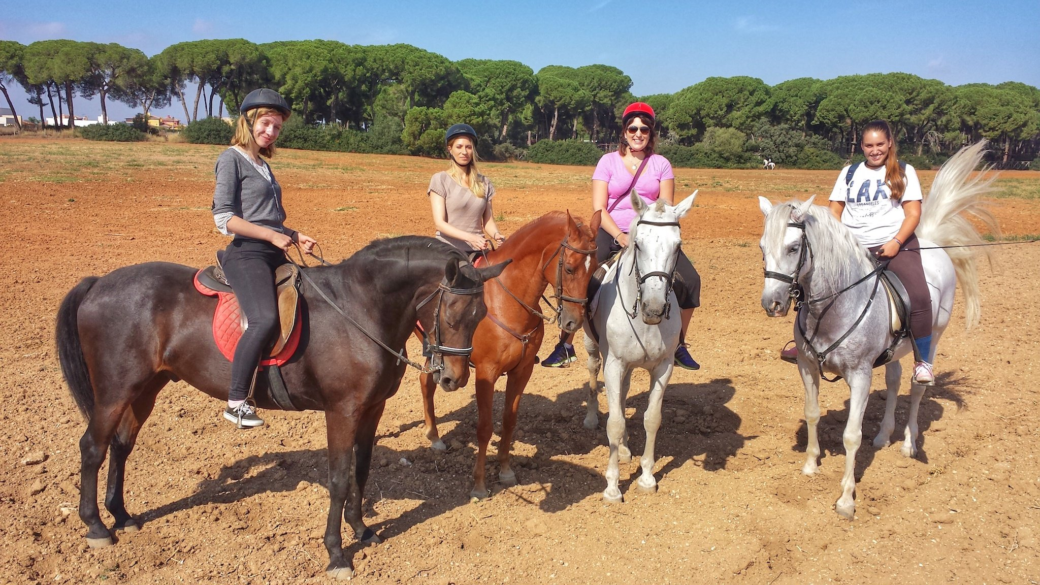 Take A Break And Enjoy The Andalusian Horseback Riding From Seville_71
