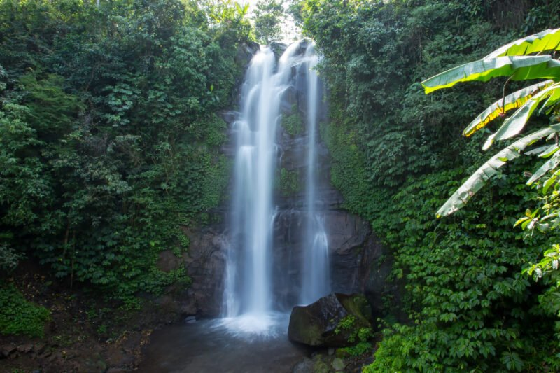 Take A Swim At The Golden Waterfall On The Northern Bali Experience