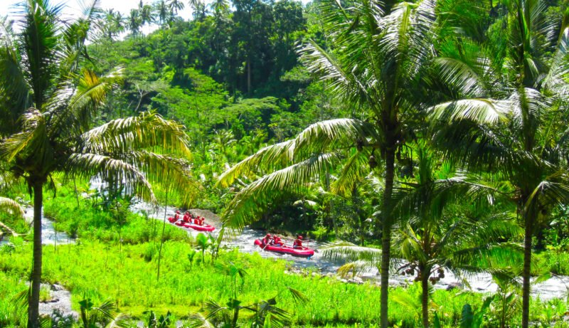 Take A Wildwater Rafting Adventure On Teh Ubud Wild Water Rafting & Kintamani Volcano Tour From Ubud, Sanur, Kuta, Jimbaran Bay, Seminyak, Legian, Nusa Dua, Uluwatu, Canggu, Denpa