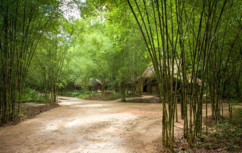 Cu Chi Tunnel Half Day Tour From Ho Chi Minh City_1