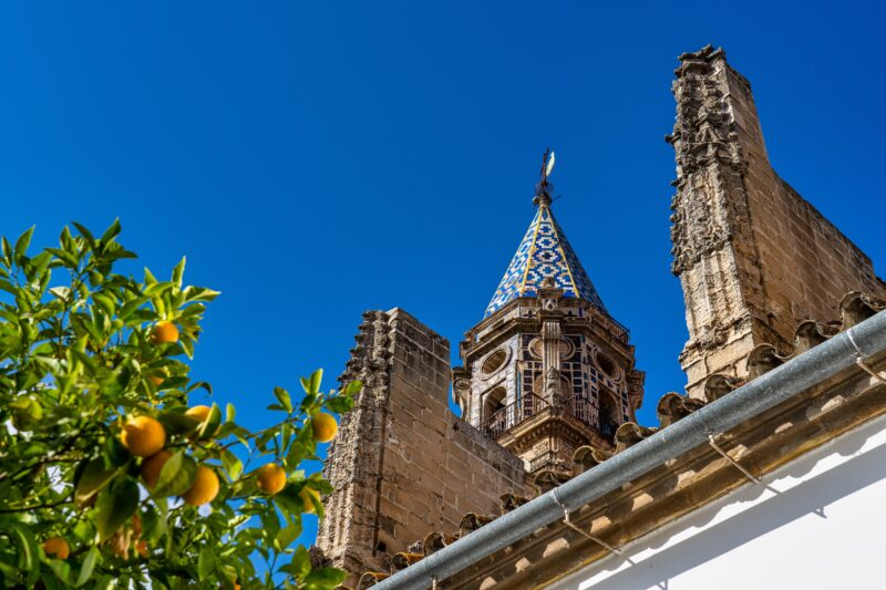 Join Us To The Cadiz & Jerez Sherry Tasting Tour From Seville