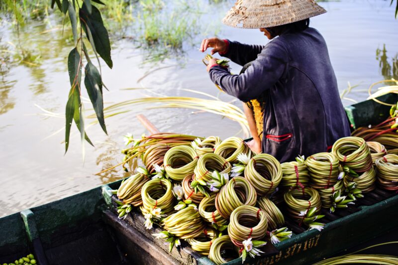 Mekong Delta Tour From Ho Chi Minh City_1