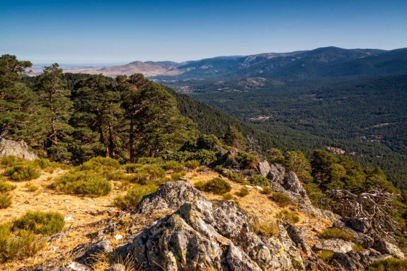 Sightsee Impressive Rock Formations, High Summits, Mountain Wildlife And Flora In Our Madrid Hiking Tour
