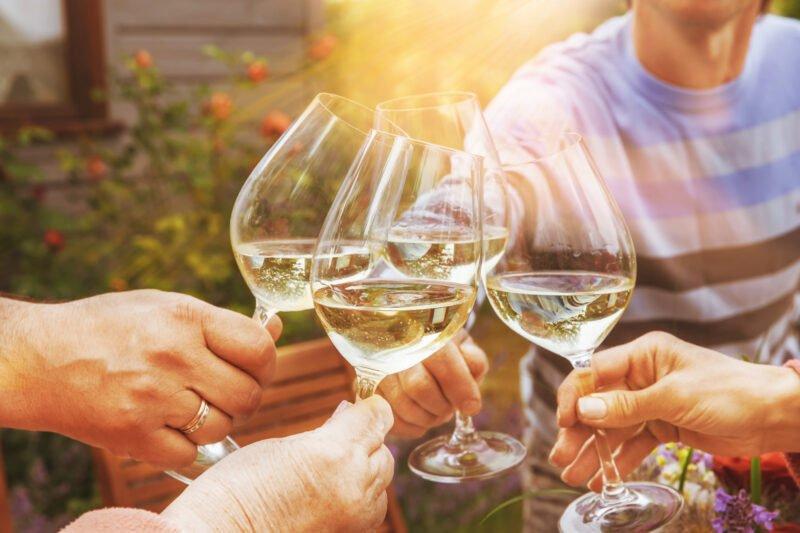 Taste The Wine With Some New Friends On The Txakoli Wine Tasting Tour From Bilbao