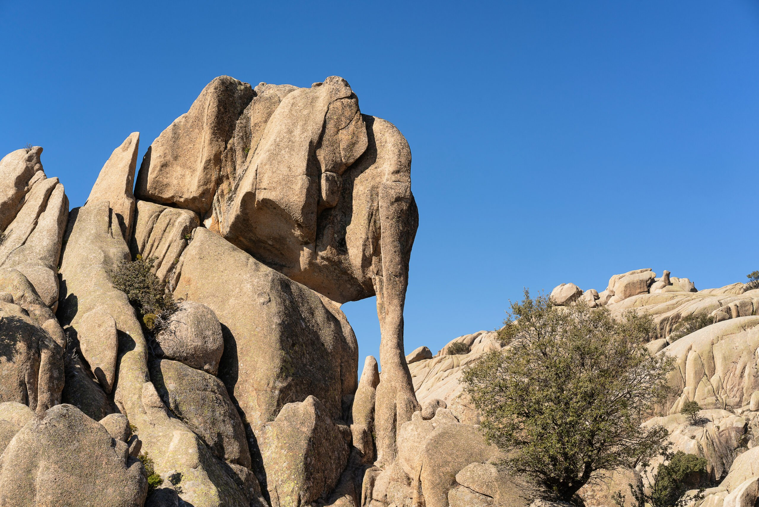 Explore The Elephant Peak In Our La Pedriza Hiking Tour