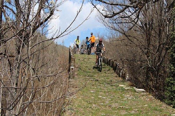 oak Forest Mountain Bike Tour From Elati Village - Ioannina_94_1