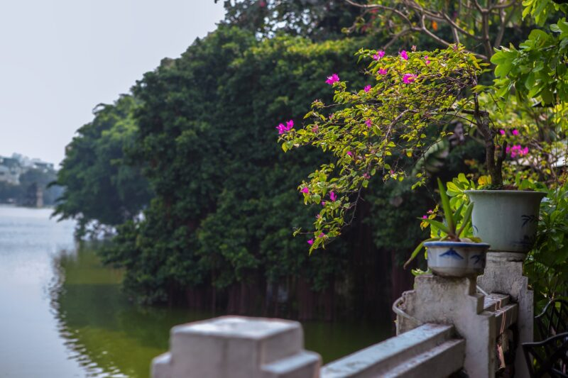 10 Day Culinary Package Tour Through Vietnam_8