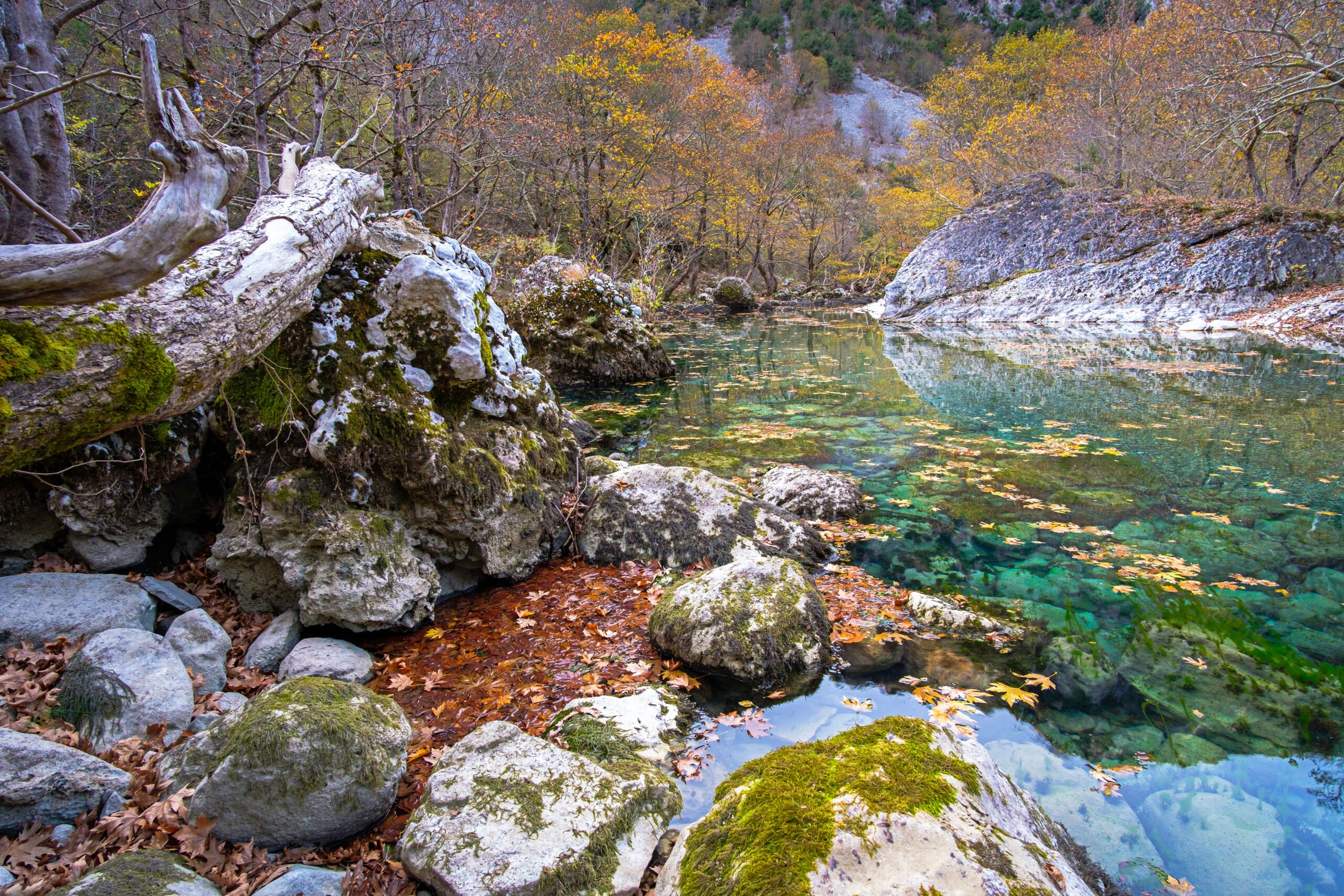 Discover The Beautiful Voidomatis Gorge On The Voidomatis Gorge Hiking Tour From Klidonia Village - Ioannina