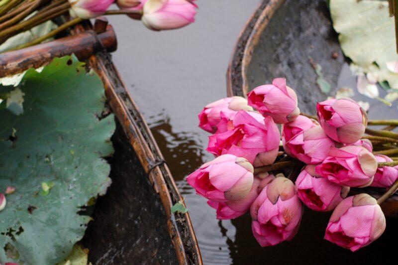 Experience The Beauty Of Hanoi