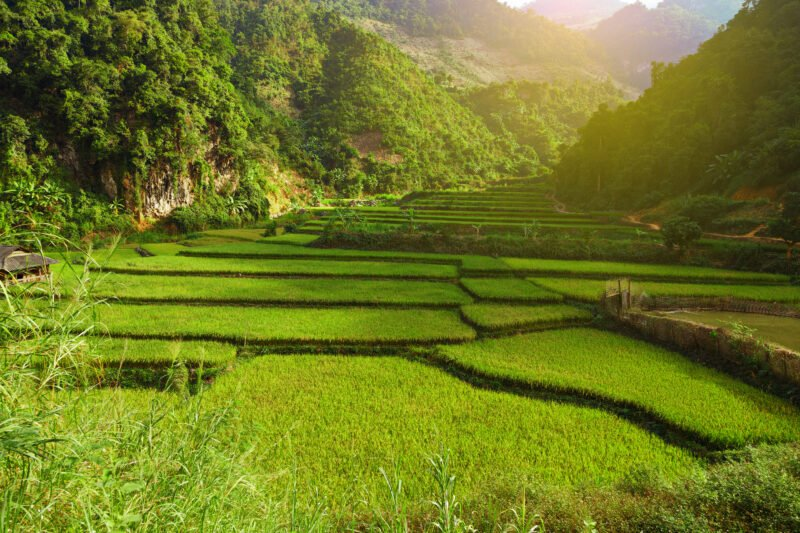 Exquisite Vietnam 13 Day Package Tour Mai Chau