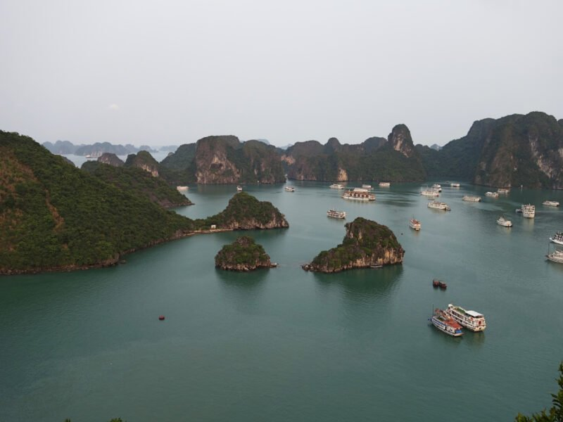 Halong Bay Cruise On The Flavors Of Vietnam -12 Day Gastronomical Package Tour -91halong Bay Cruise On The Flavors Of Vietnam -12 Day Gastronomical Package Tour -91