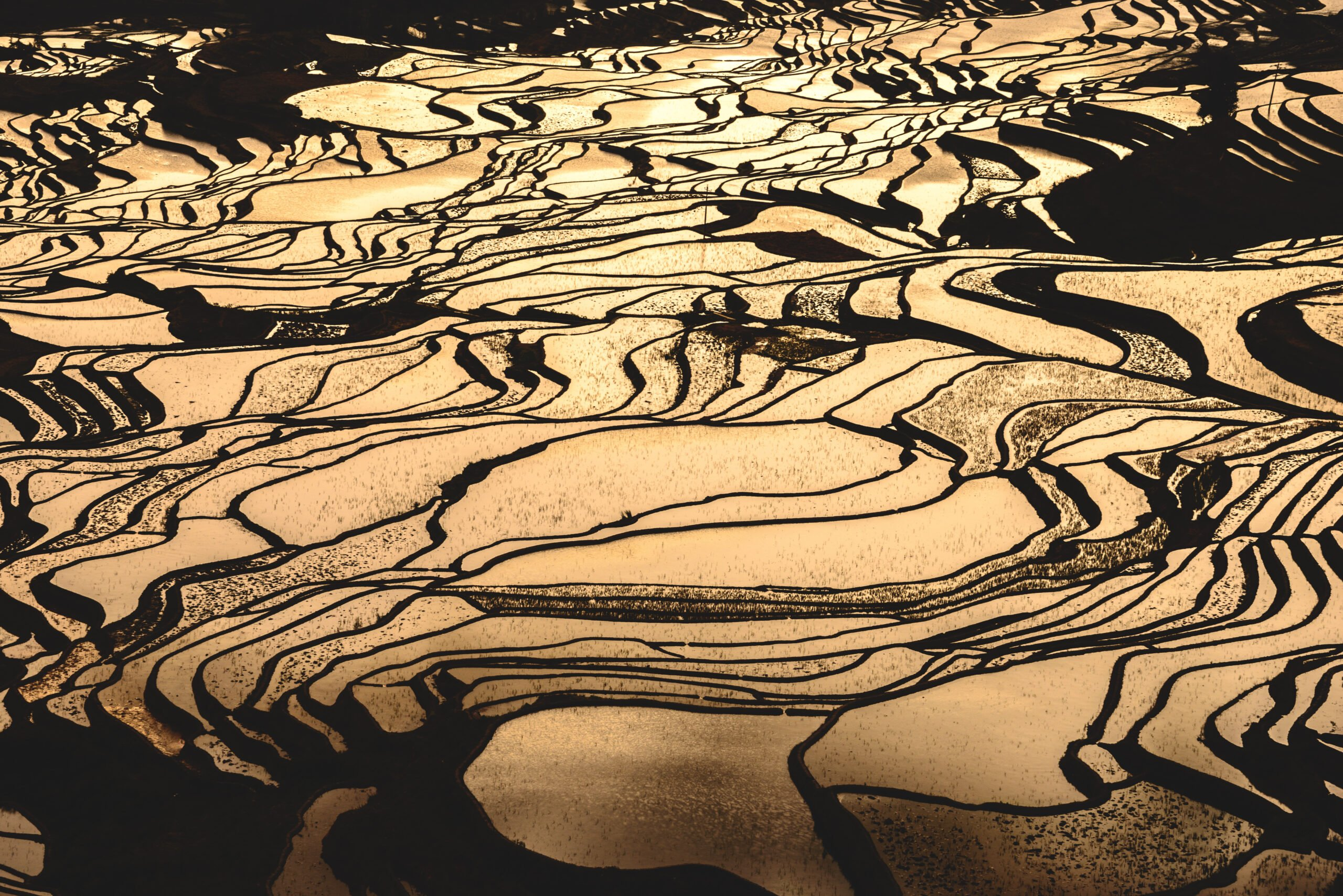 Jianshui And Yuanyang Hani Rice Terraces - Day 3