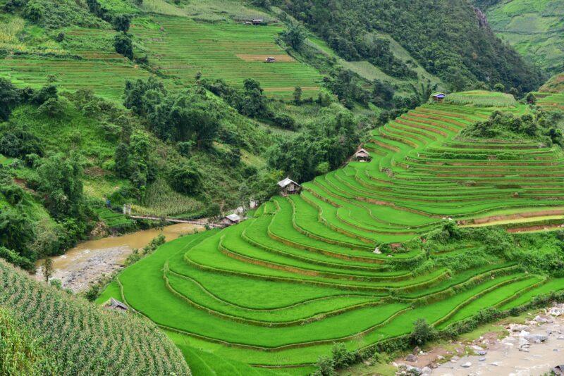 Lao Chai Village & Sapa
