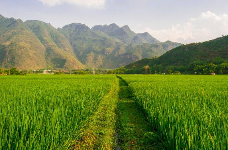 Mai Chau Trekking
