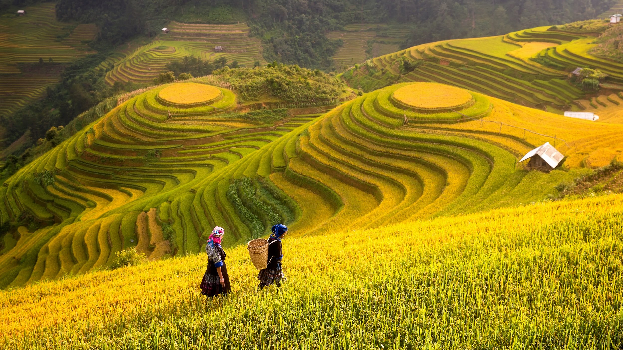 Marvelous Vietnam 12 Day Package Tour
