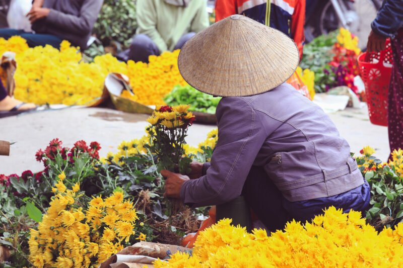 Marvelous Vietnam 12 Day Package Tour_7