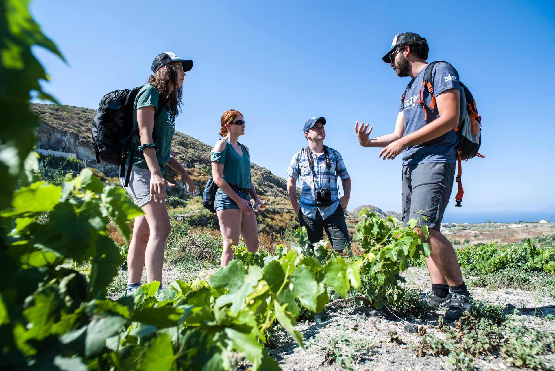 Your Local Guide Will Teach You More About The Beautiful Island On The Hiking, Snorkeling & Cooking Experience In Santorini_92