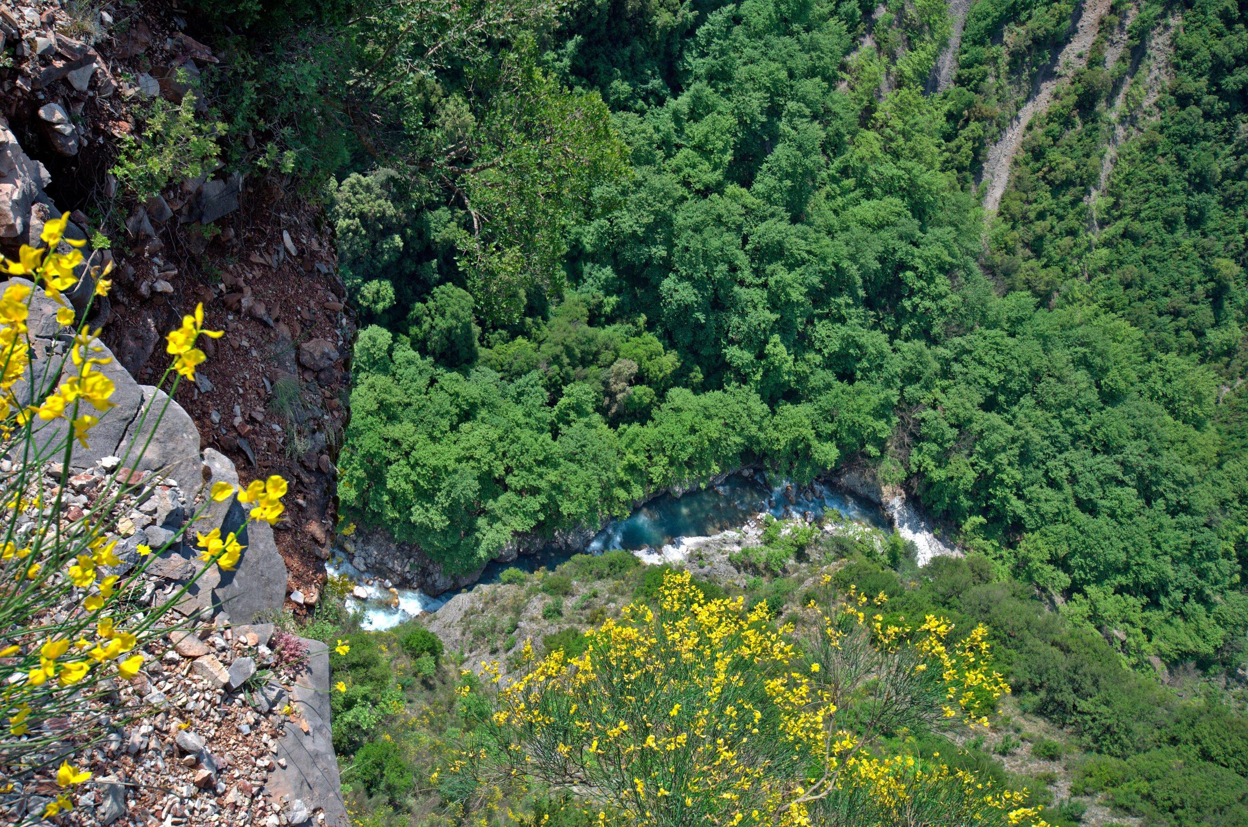 Zagori Secrets Sights & Bridges E-bike Tour From Elati Village - Ioannina_3