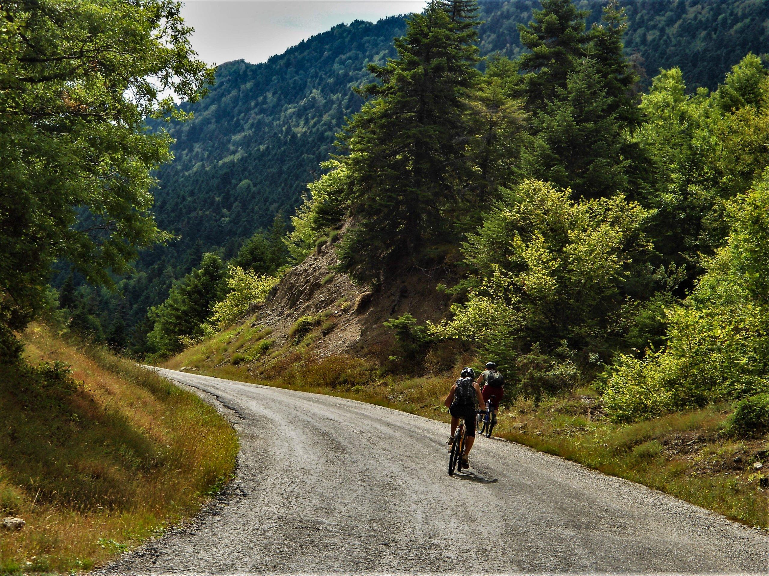 Zagori Secrets Sights & Bridges E-bike Tour From Elati Village - Ioannina_94