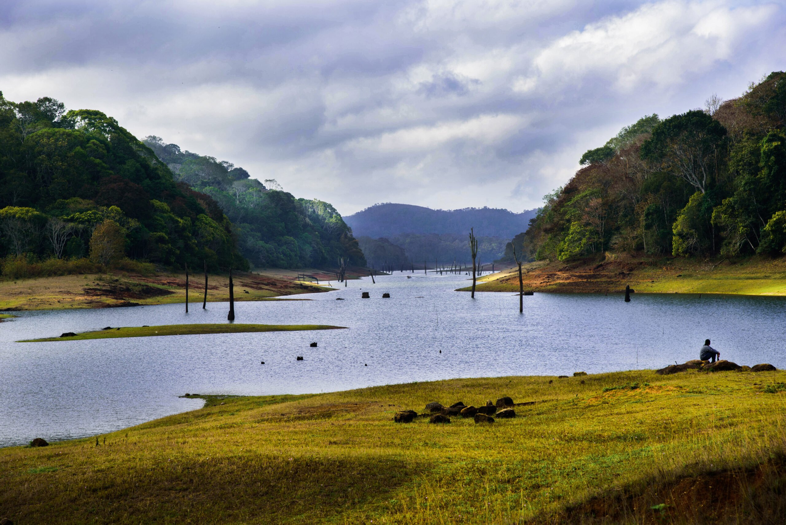 Amazing Southern India Views In Our 3 Day Wildlife And Culture Tour Of Thekkady From Kochi
