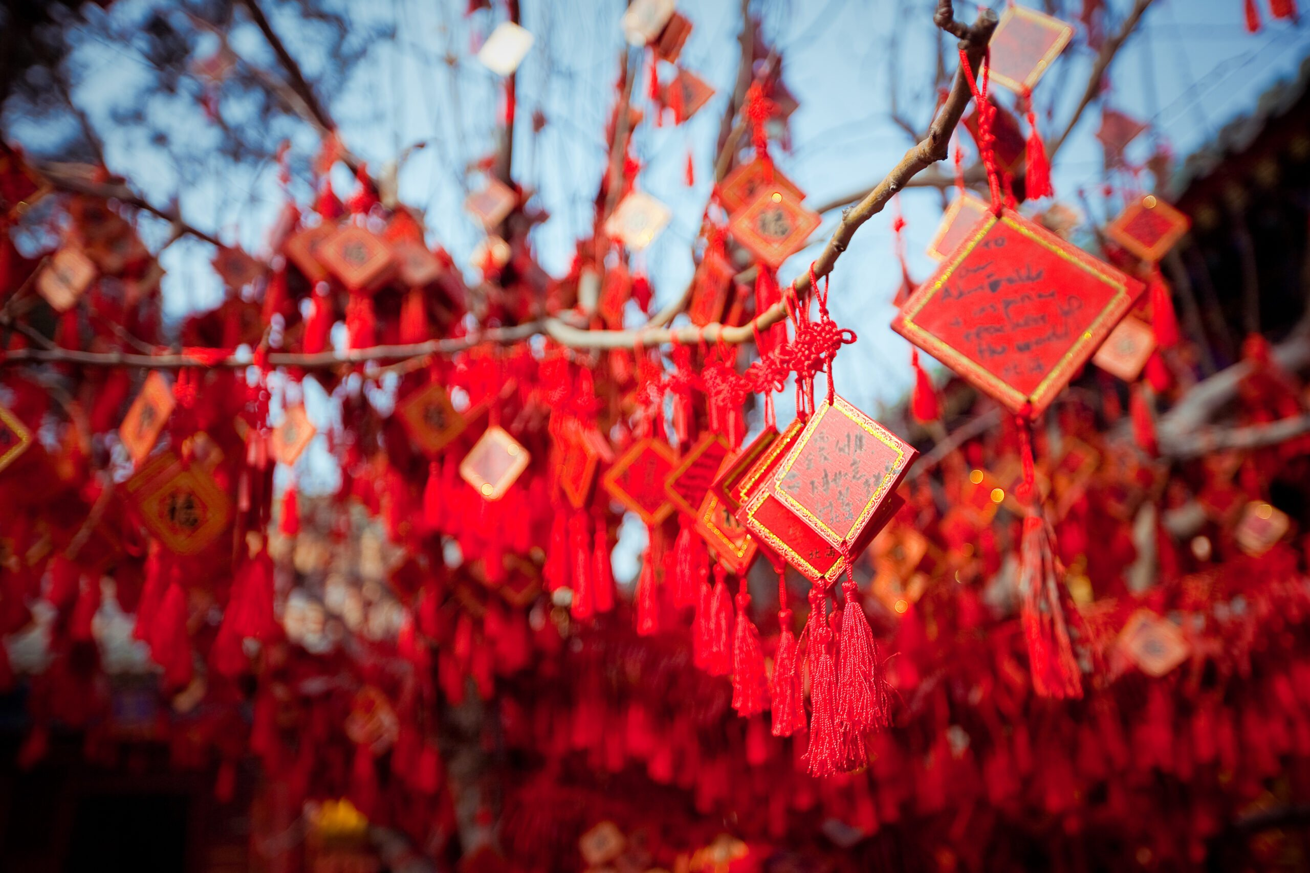 Best Of China In Our China Private Impression 14 Day Package