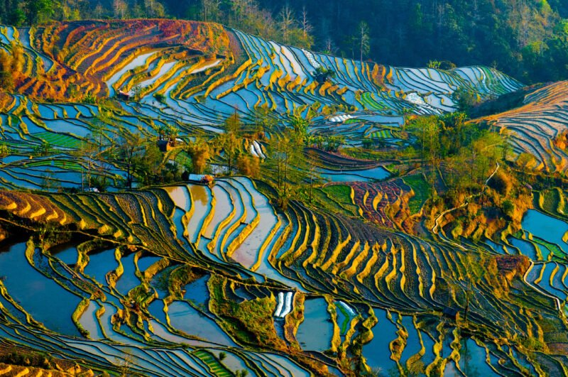 Learn About The History Of Jianshui And Yuanyang In Our Jianshui And Yuanyang Hani Rice Terraces 3 Day Package