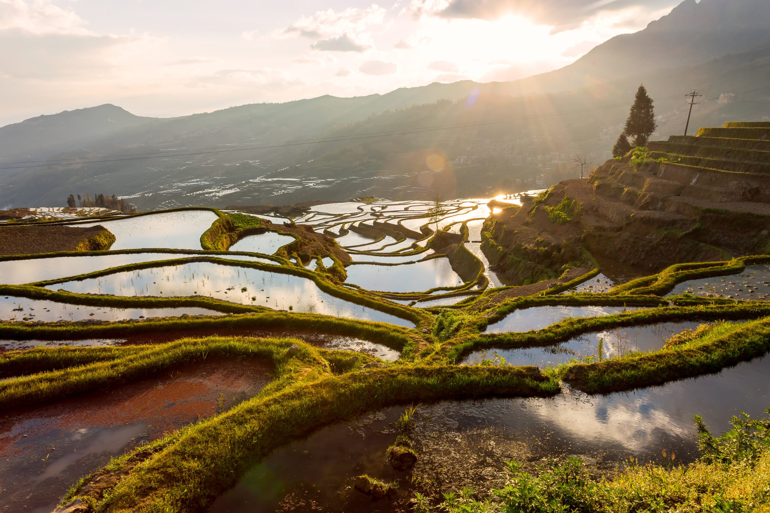 Marvel The Amazing Hani Rice Terraces In Our Jianshui And Yuanyang Hani Rice Terraces 3 Day Package