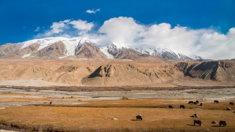 Stunning Views In Our Best Of Silk Road Tour