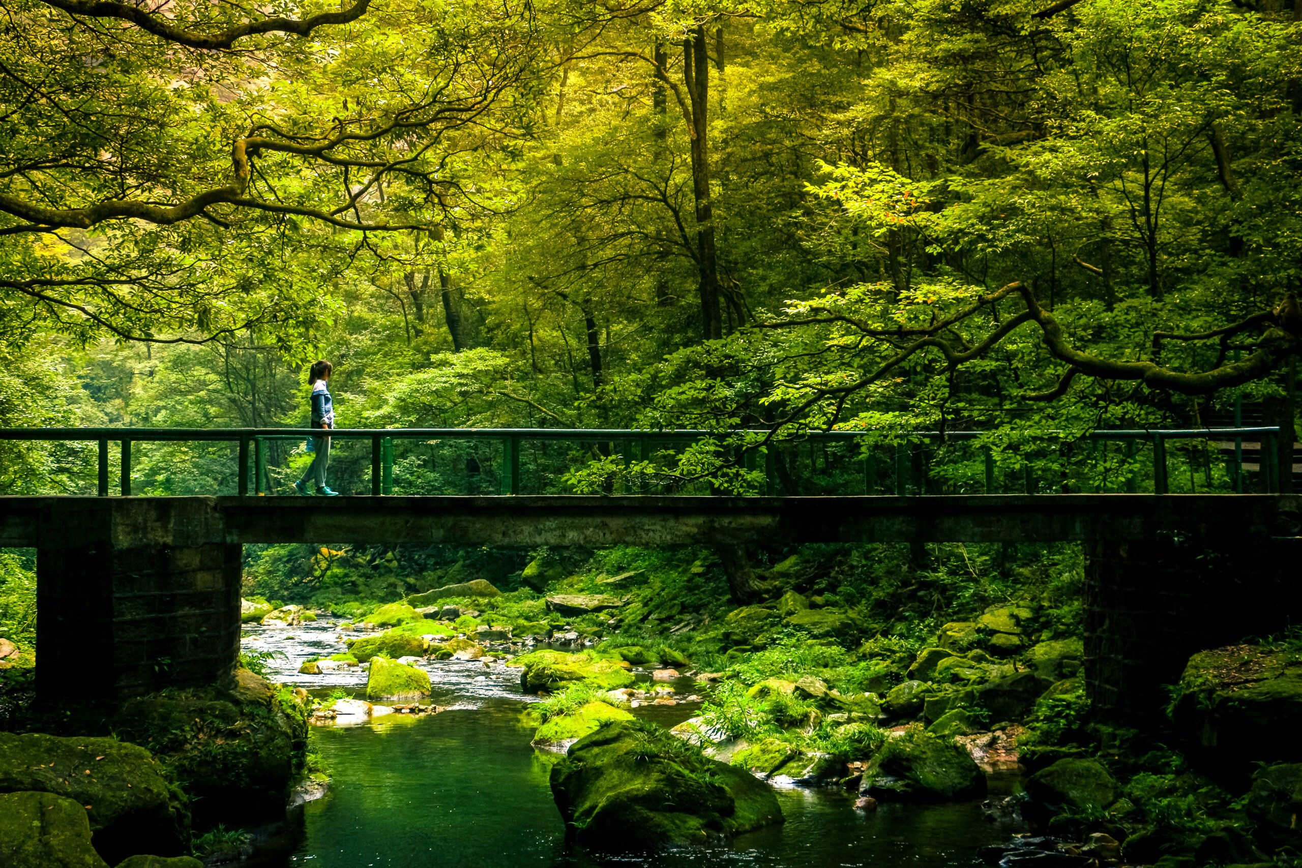 Walk Along The Road Leading To Gateway Of Heaven In Our Zhangjiajie And Fenghuang 4 Day Package Tour
