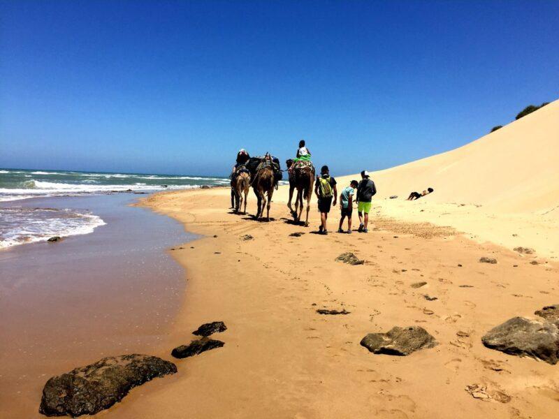 Essaouira Tour & Camel Trek From Marrakesh_1