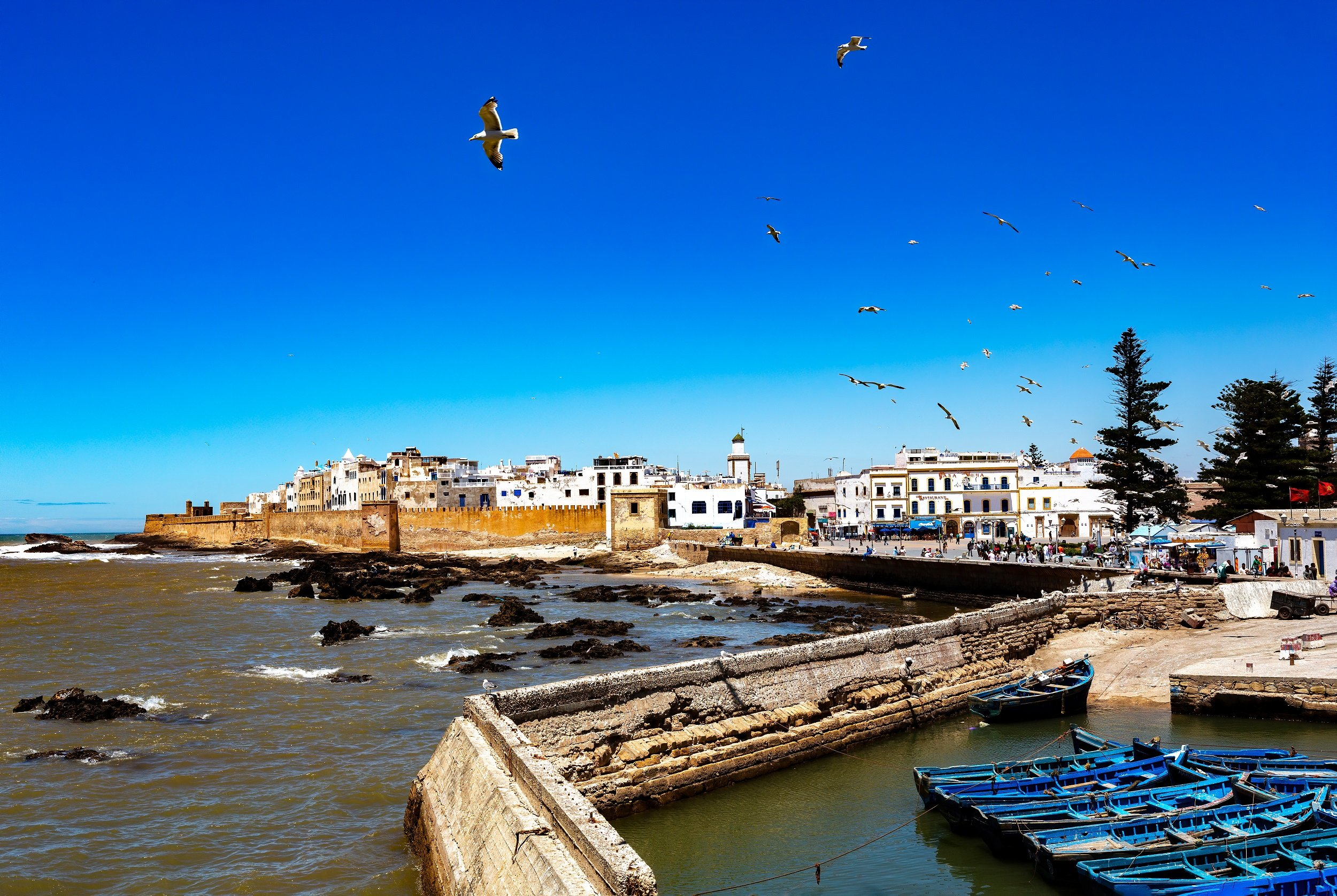 Essaouira Tour & Camel Trek From Marrakesh_5
