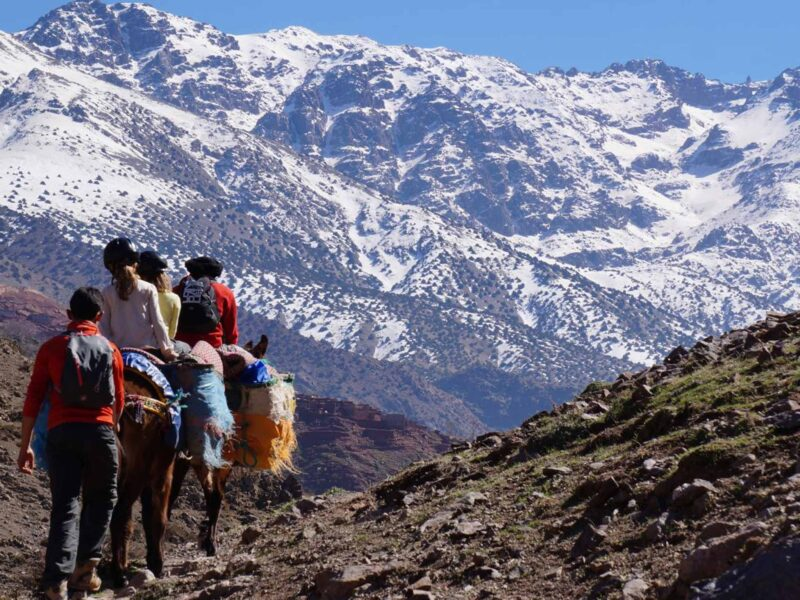 Imlil & Aroumd Berber Village Tour From Marrakesh_4