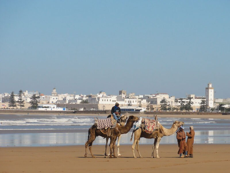 Join Us To A Essaouira Tour From Marrakesh_102